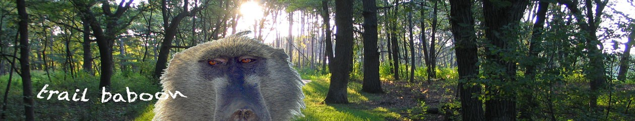Trail Baboon