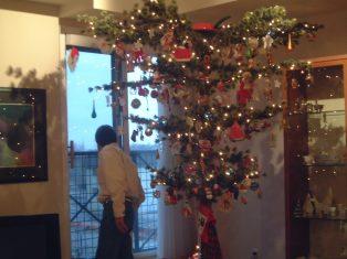tree2004