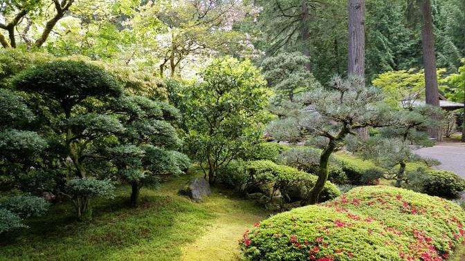A Garden without Godzilla