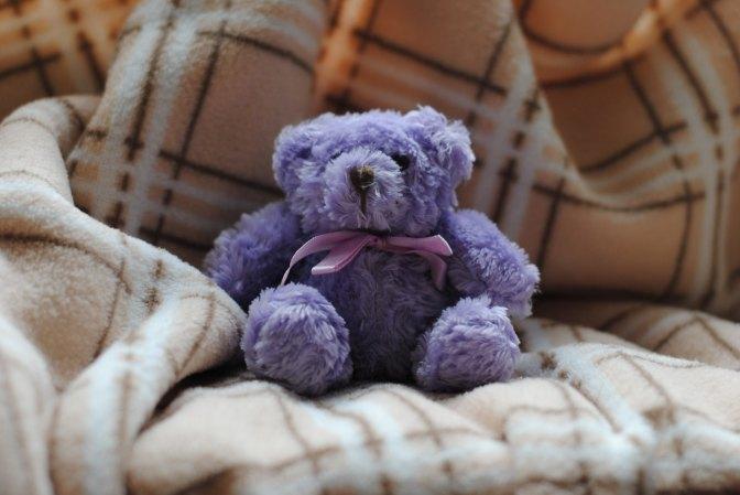 Bear Ballyhoo