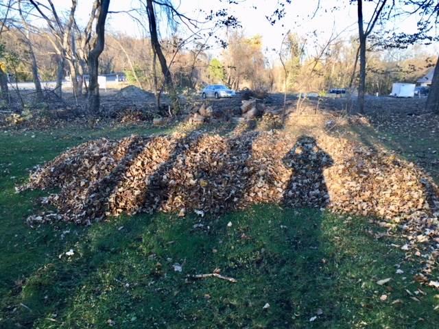 Leaf Pile Loss