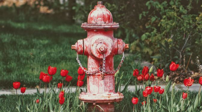 Adopt A Hydrant