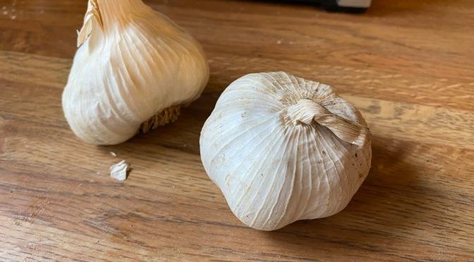 Garlic Bonanza
