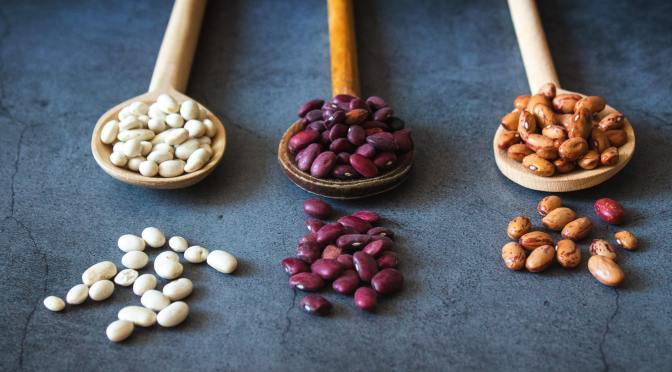 Songs to plant beans by